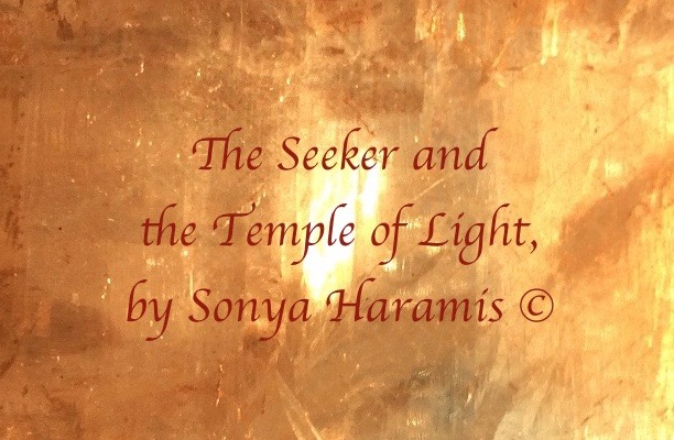 The Seeker and the Light by Sonya Haramis